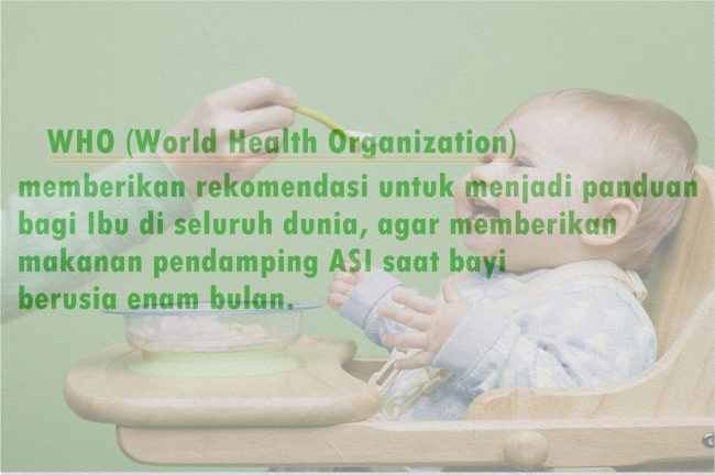 milna organik11